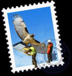 Mac-メール不具合時対応のアイキャッチ